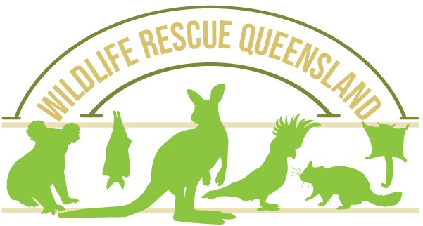 Wildlife Rescue Queensland